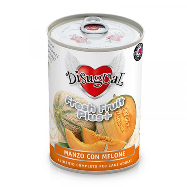 DISUGUAL DOG PUSZKA FRUIT+ WOŁOWINA MELON