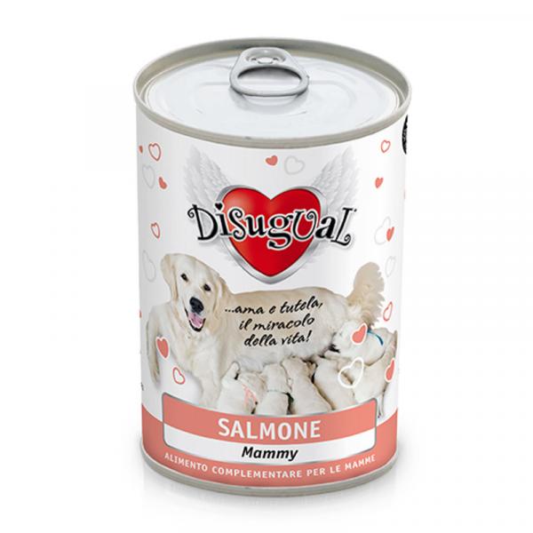 Disugual Dog Starter – Łosoś